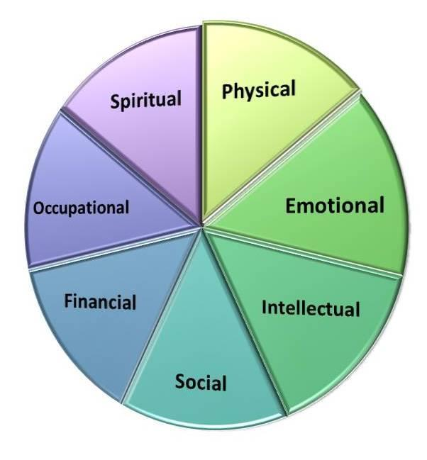 Focus on Recovery Eight dimensions of wellness Four dimensions for recovery o Health o Home stable, safe