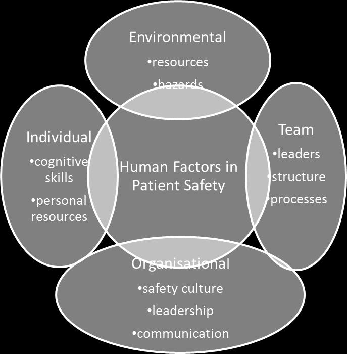 policy and practice) related to the human factors associated with MAE s, in order of their perceived importance, to determine the order of focus