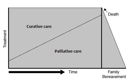 Introduction In the Netherlands, awareness has grown that palliative care should be involved in an earlier phase in the care process since it avoids an abrupt transition from aggressive, curative