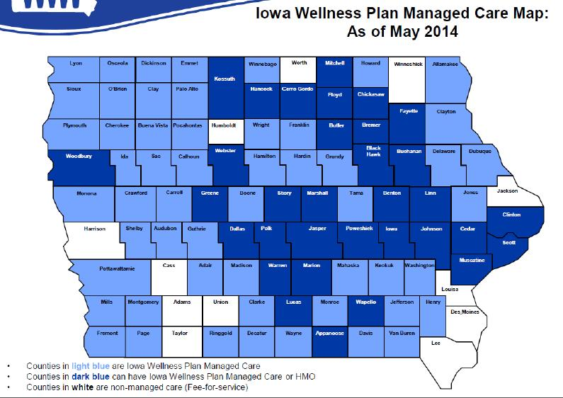 Wellness Plan Managed Care White Medicaid Fee-For- Service using existing Medicaid Provider Network (no incentives) Light Blue