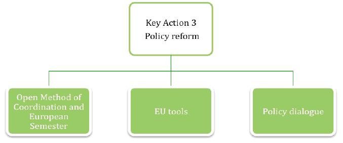 Key action 3 Support for policy reform Development of indicators Policy analysis Comparative studies Development of national implementation of