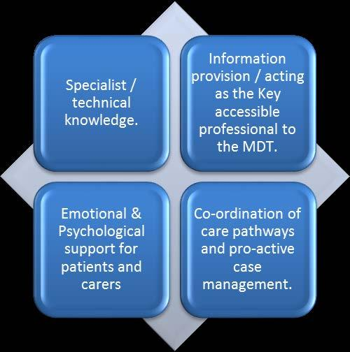 3. Functions of the Clinical Nurse Specialist: The key domains of the Specialist Nurse role can be described as: Technical Information provision & improving patient experience Emotional /