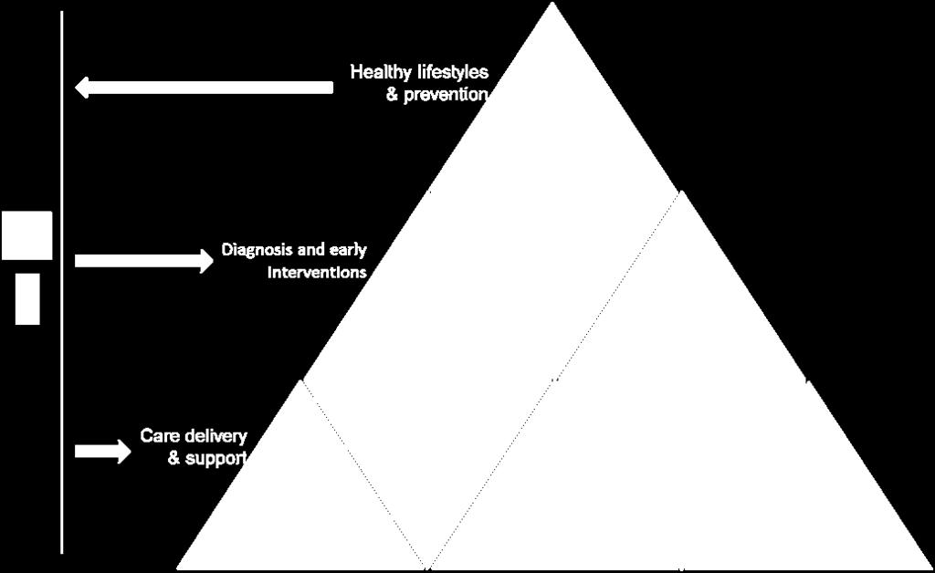 Figure 4: Features of the ideal model for integration between health and social care of services for diabetes 5.