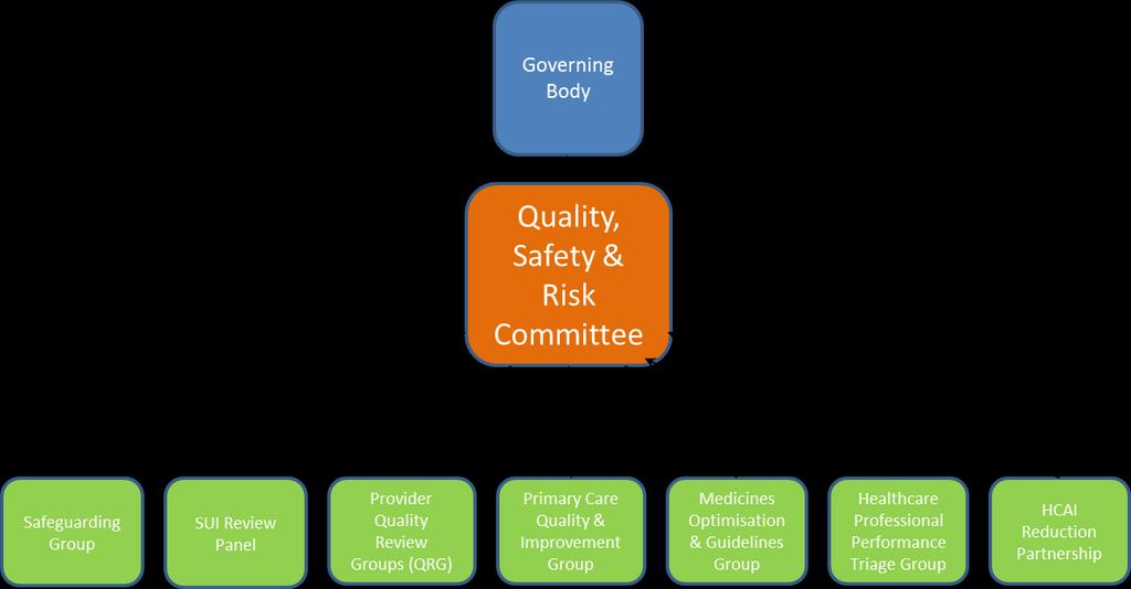 4 Delivering the Strategy 4.1 Governance This strategy is owned by the Quality Safety and Risk (QSR) Committee of Newcastle Gateshead CCG and meets bi-monthly.