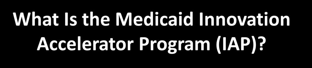 What Is the Medicaid Innovation Accelerator Program (IAP)?
