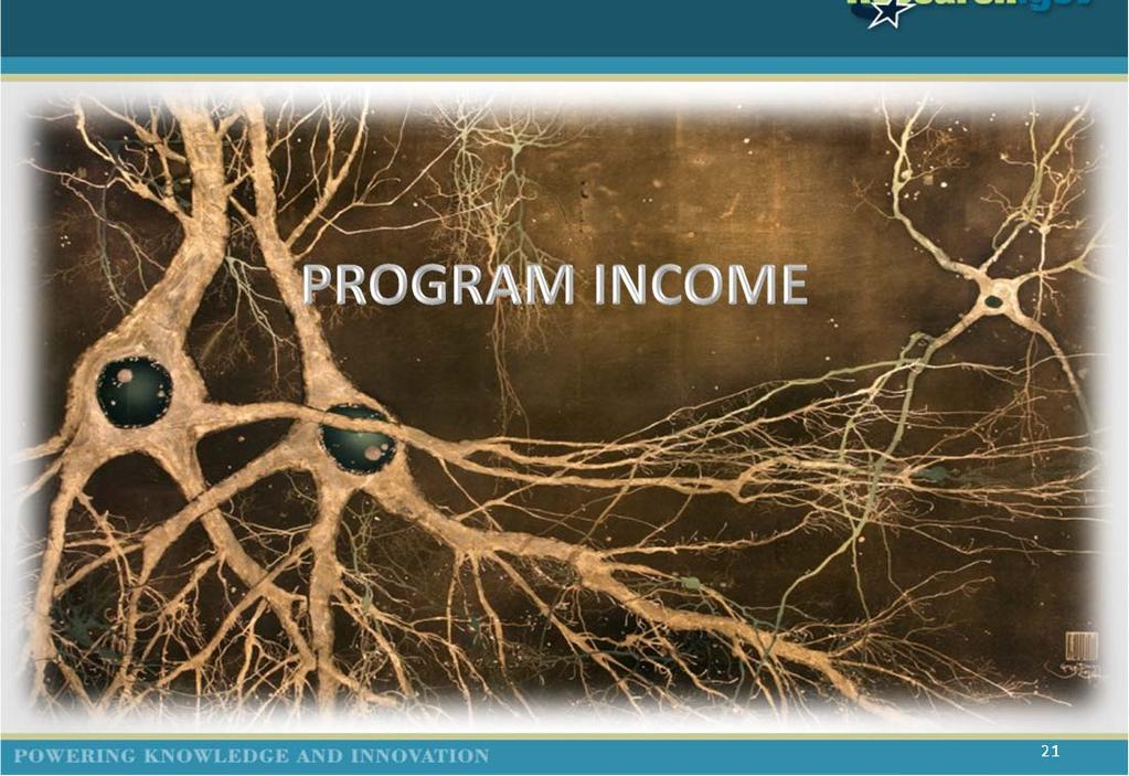 PROGRAM INCOME 21 Program Income The Program Income Reporting Worksheet was made available to awardees through Research.gov.