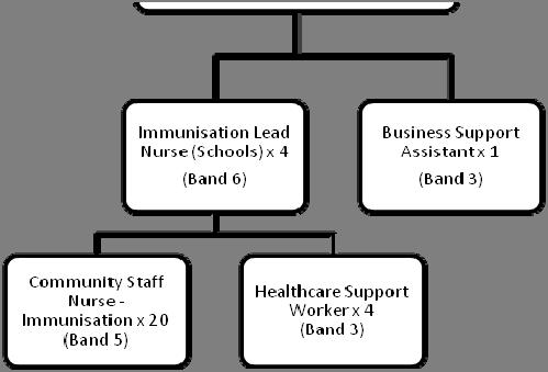 4. ORGANISATIONAL POSITION Professional Lead 5.