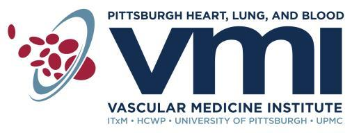 THE VASCULAR MEDICINE INSTITUTE (VMI) ANNOUNCES THE PILOT PROJECT PROGRAM IN HEMOSTASIS AND VASCULAR BIOLOGY (Revised, November 2017) The VMI was established at the University of Pittsburgh in 2008