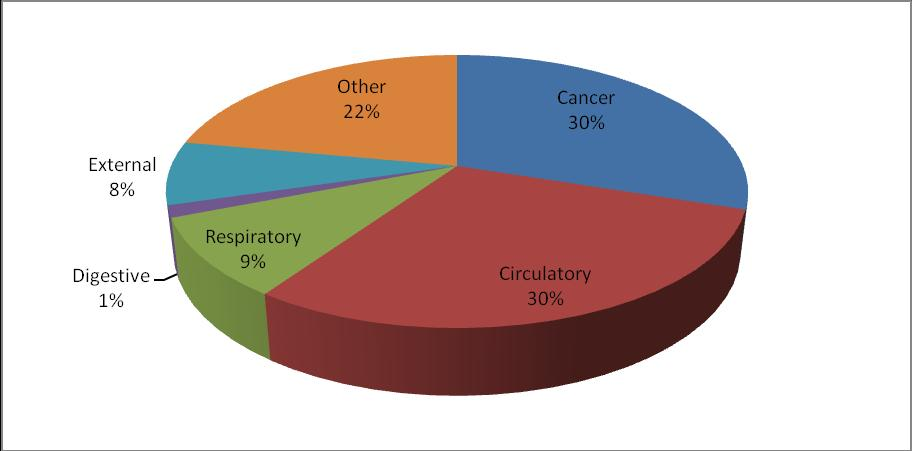 Figure 3 A pie chart to show the main categories 5 of the cause of death (all deaths in Shetland), in 2011 6 It was also noted in the consultation exercise that there needs to be a particular focus