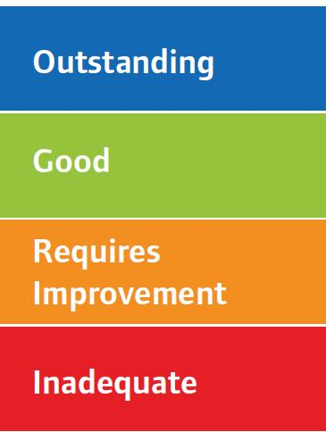 Rating four point scale High level characteristics of each rating level Innovative, creative, constantly striving to improve,