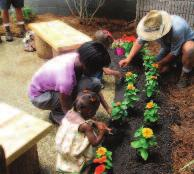communities of Coastal GEorgia foundation In 2005, a cadre of some 70 families and foundations gathered their visions and their personal resources to establish the Communities of Coastal Georgia