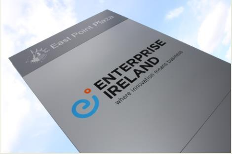 Enterprise Ireland Overview Irish State Indigenous Industry Development Agency What we do Work with 5,000 Irish owned businesses across all sectors of manufacturing and internationally created