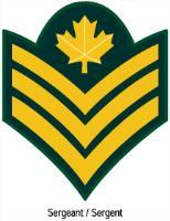 Recognizing cadet ranks as well as CAF ranks will allow cadets to properly interact with others.