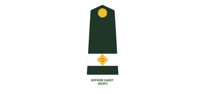 OFFICER RANKS IN THE CANADIAN ARMY Officer ranks in the Canadian Army are divided into 4 categories: Categories Subordinate officers* Junior Officers Senior Officers General Officers Ranks
