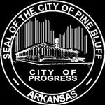 City Council Awards Bid to Appropriate Entity to Undertake the Process. Master Plan is Developed, Adopted, and Enforced.