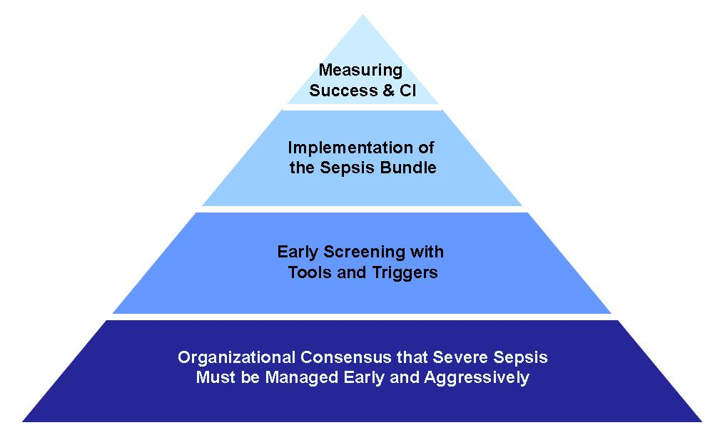 4-Tier Process for Severe Sepsis Program Implementation Organizational Consensus that