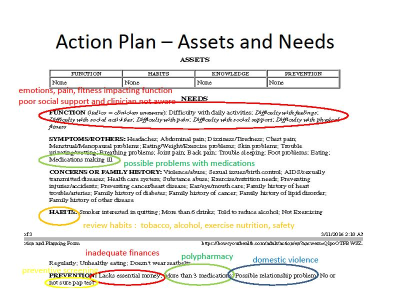The next sections, health Assets and Needs show where and how the determinants of care are reported in the action plan.