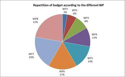The following two diagrams summarize efforts (covered by scale of unit costs) and the costs (total budget of 999 888 ) associated to each WP.